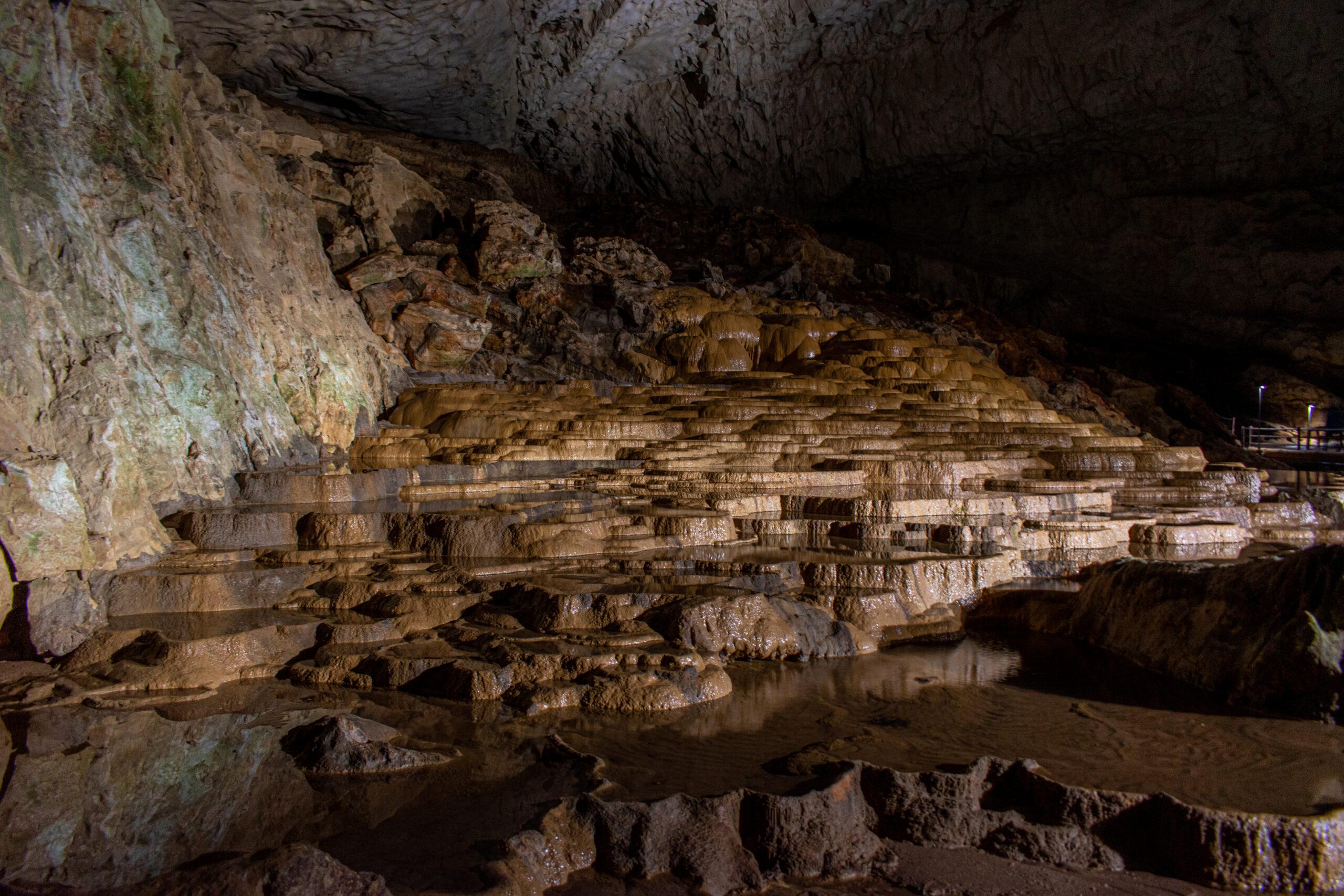 日本最大級のカルスト台地の下に眠る鍾乳洞!山口県の秋芳洞への行き方!