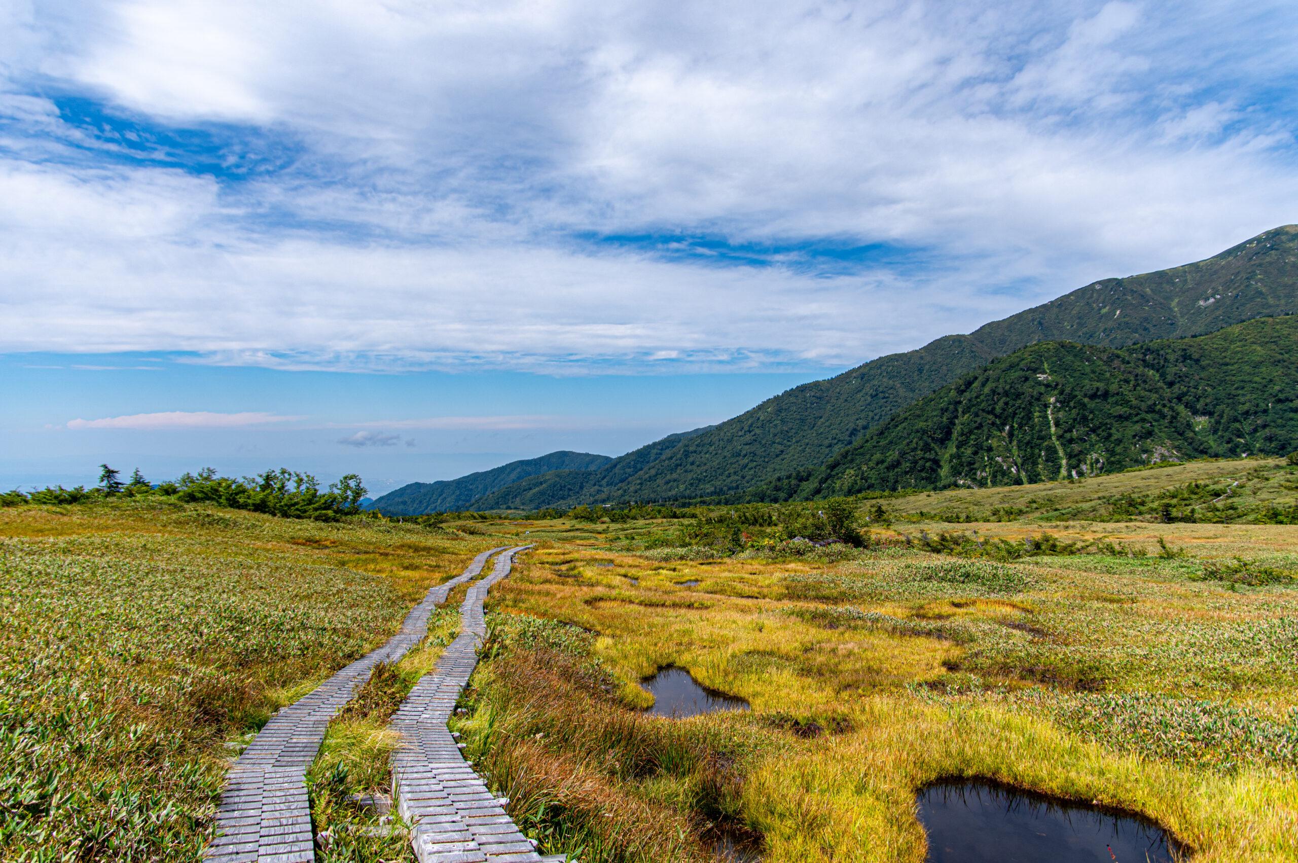 立山にある標高2000mの高原!富山の弥陀ケ原への行き方!