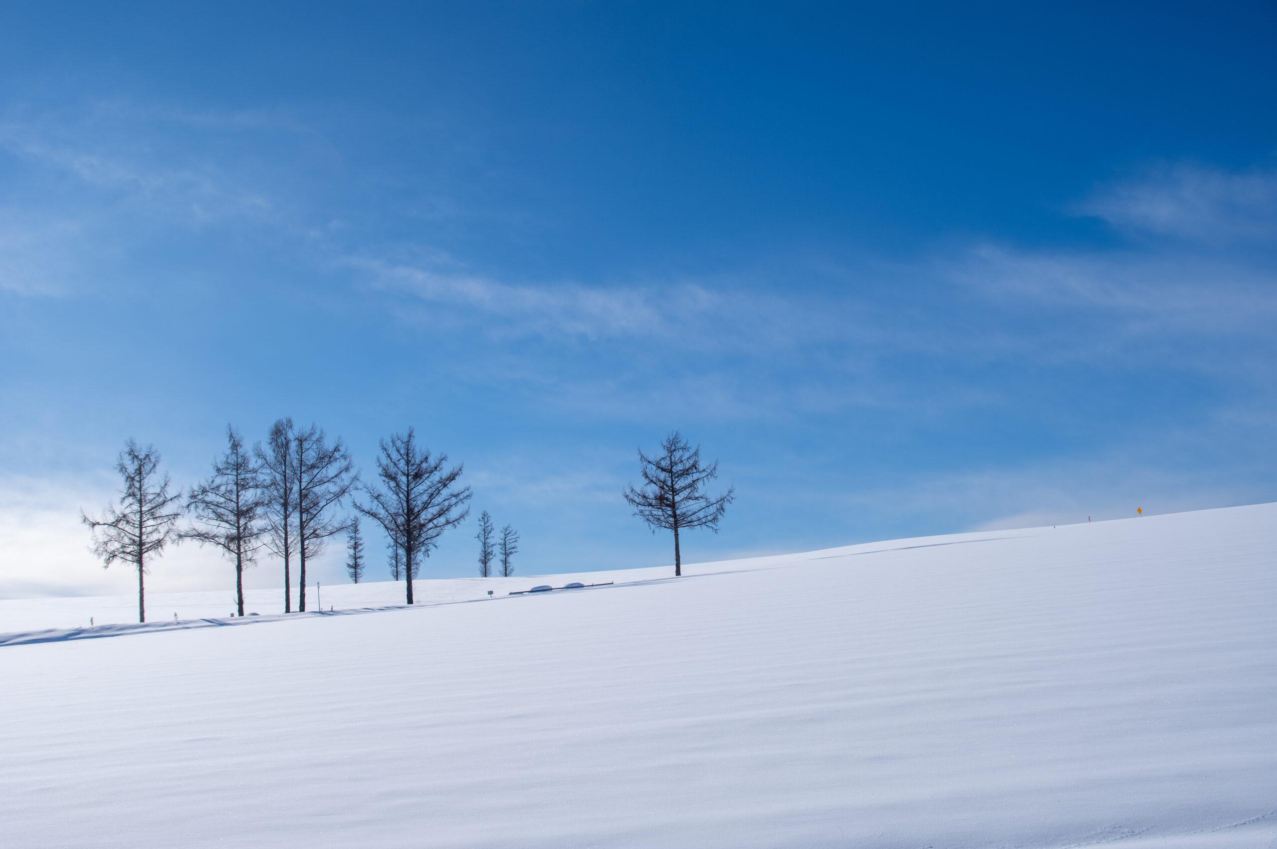 北海道の雪景色を見たければここに行こう!美瑛町への行き方!