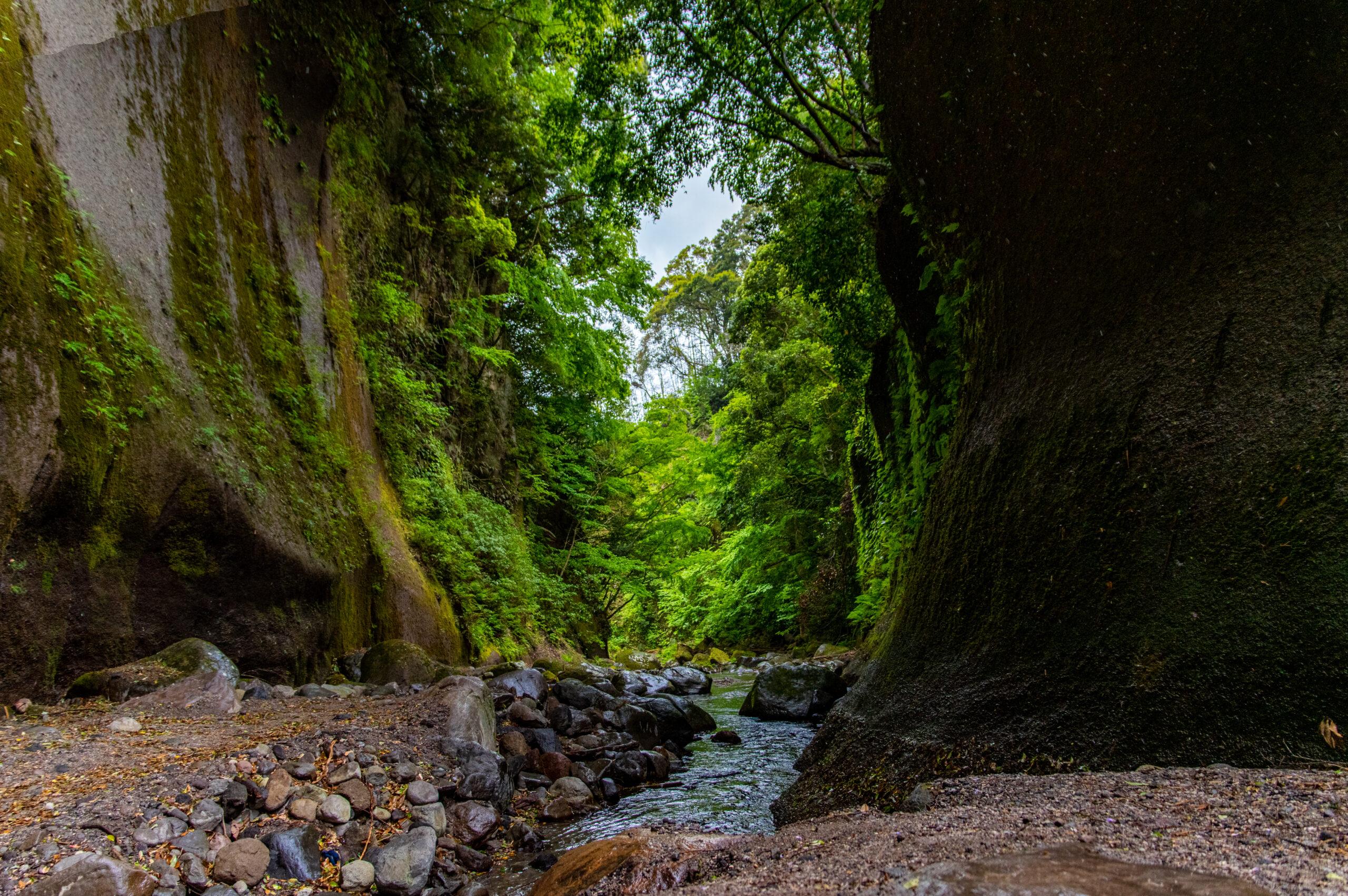 決して徒歩で行こうとするな。大分県の由布川峡谷への徒歩での行き方。